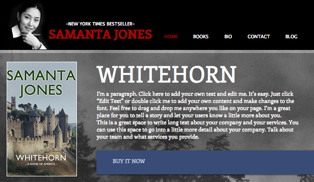 An easy to customize authors website template with informational