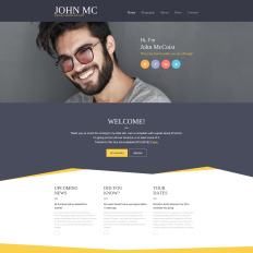 Writer/Author Responsive Website Template #58740