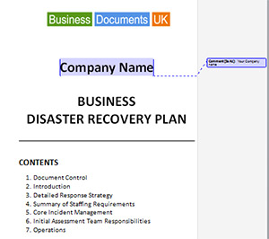 Business Continuity And Disaster Recovery Plan Template Sample