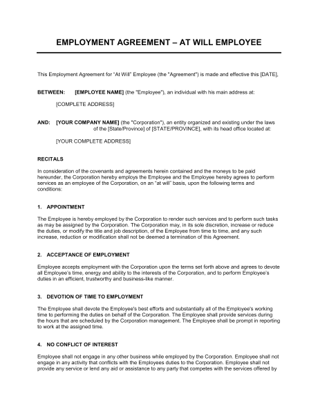 Employment Agreement At Will Employee   Template & Sample Form