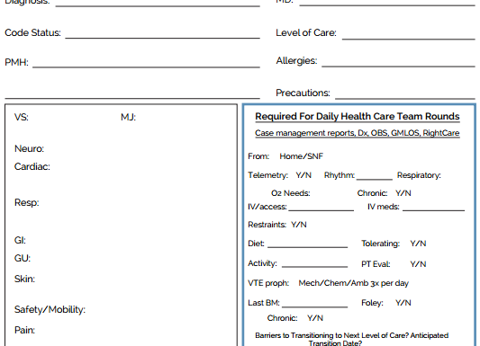 The Ultimate Nursing Brain Sheet Database (33 nurse report sheet