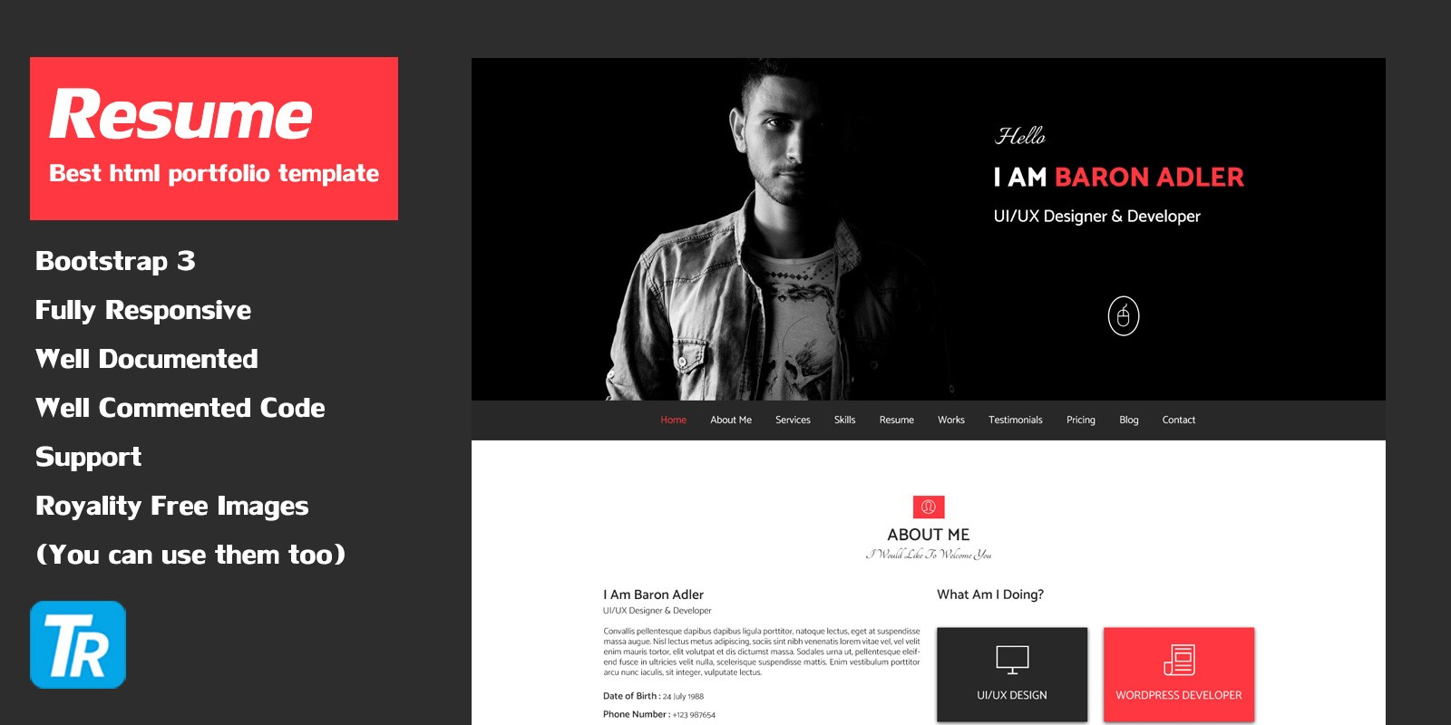 Resume Personal Portfolio Web Template Html Website