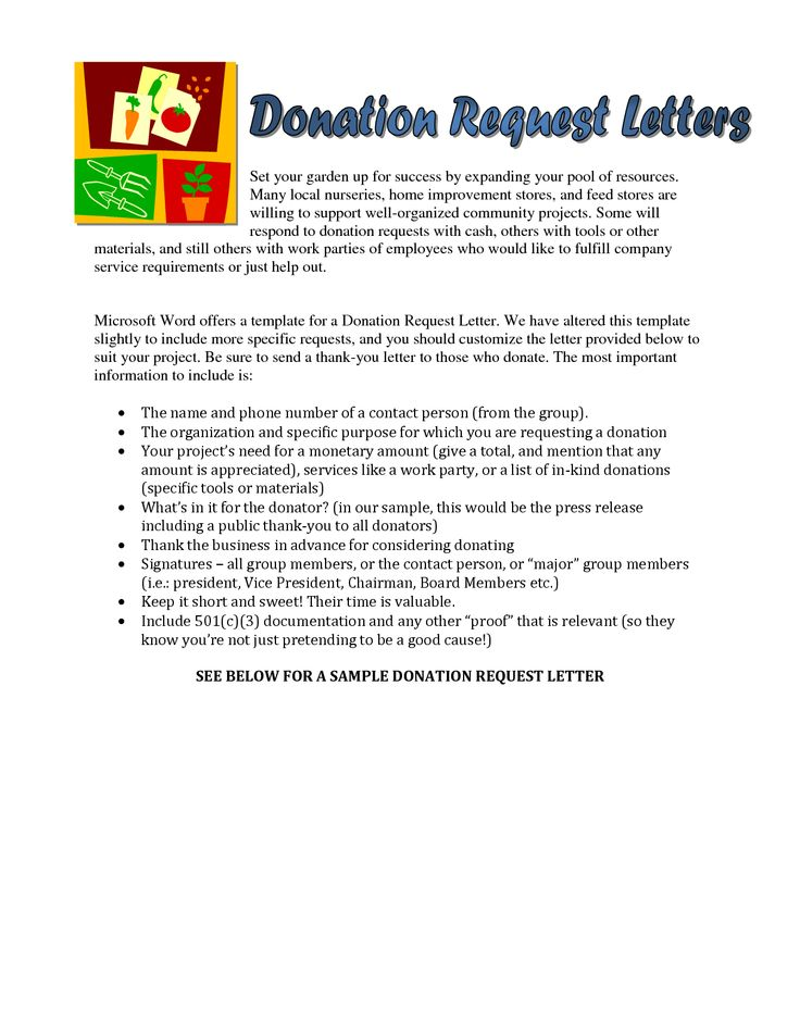 Sample Donation Request Letter For Food With Lucy Charity Sample