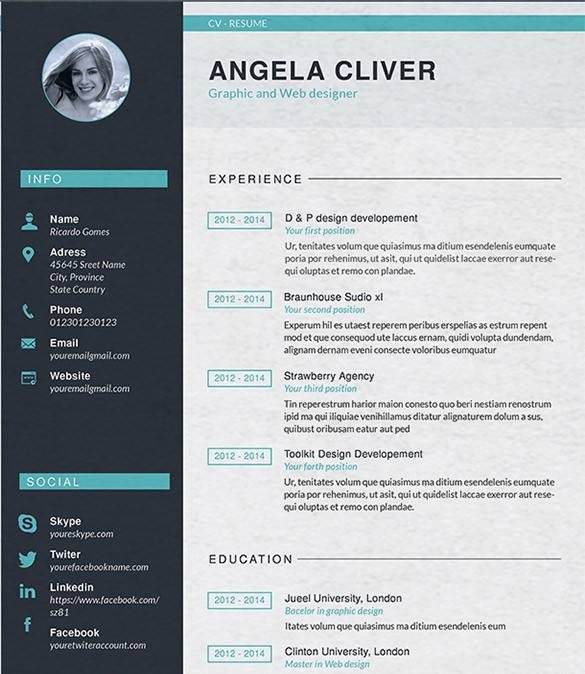 web designer resume template web designer resume template web